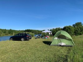 tent camping in a sunny field at the heron campground